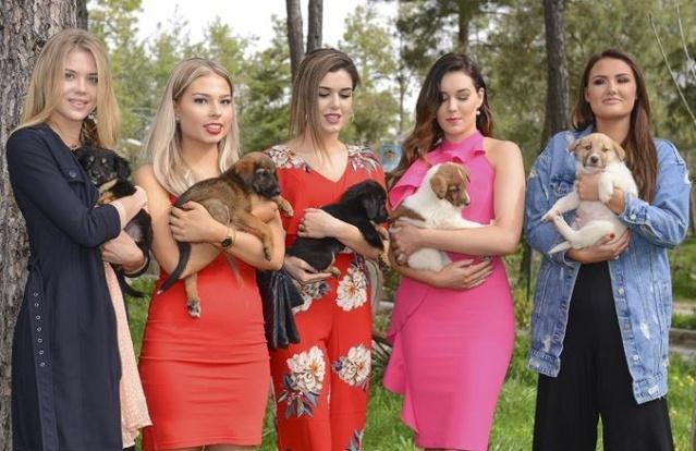 Finli Güzeller, Alanya'daki barınağı ziyaret etti