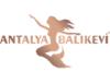 Antalya Balıkevi ile Tanışın