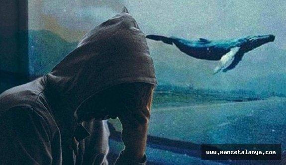 Cumhurbaşkanlığı'ndan korkutan 'Mavi Balina' açıklaması: Bu bir oyun değil