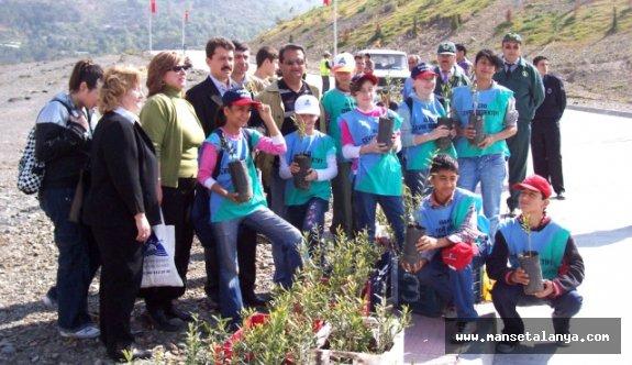 Alanya'dan Adana'ya 11 Yıllık Zeytin Hikayesi