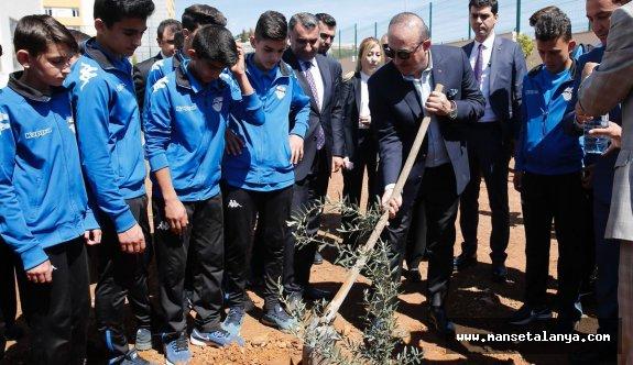 Bakan Çavuşoğlu ve eşi, Alanya'da Afrin şehitleri için fidan dikti