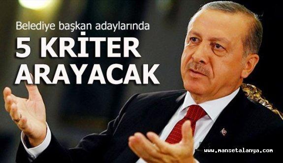 Erdoğan adaylarda bu 5 kriteri arayacak