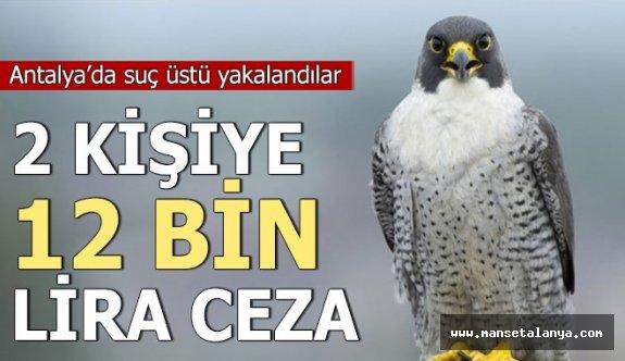 Antalya'da suçüstü yakalandılar: 2 kişiye 12 bin 488 lira ceza