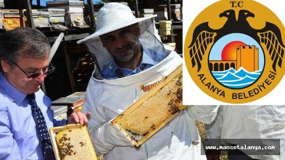 400 arıcıya arı kovanı dağıtılacak. İşte tarih!