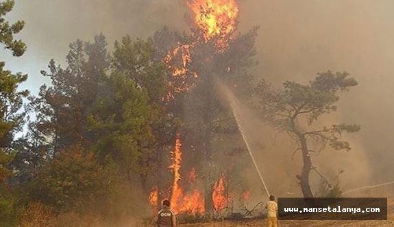 Yangını 12 yaşındaki bir çocuk yakmış!