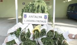 Jandarma 28 kilo esrar ele geçirdi
