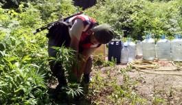 Alanya'da 28 kilo esrar ele geçirildi