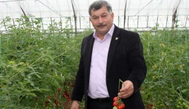 Gazipaşa'da hormon ve ilaç iddialarına tepki