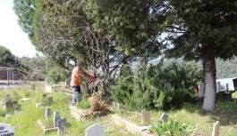 Alanya'daki mezarlıklara bakım