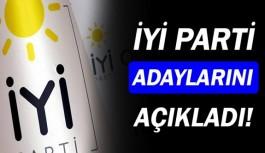 İYİ Parti Antalya adaylarını açıkladı!