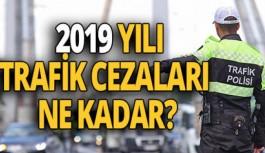 2019 Yılı Trafik Cezaları Ne Kadar?