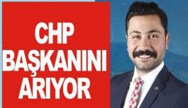 CHP Alanya İlçe Başkanını arıyor!