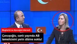 Çavuşoğlu, Canlı Yayında AB Temsilcisi'ni Yerin Dibine Soktu: PKK'yı Aklama Çalışması Var