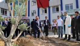 Alanya'da ağaç dikimi kampanyası!
