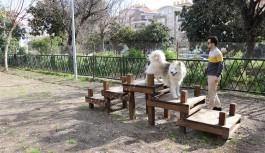 Alanya'nın ilk köpek parkı!