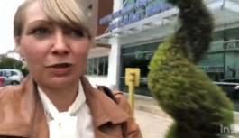 Alman turist: Başkent Alanya hastanesinde emin ellerdesiniz. Ben böyle hizmeti Almanya'da dahi görmedim!
