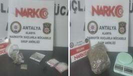 Alanya'da yeşil kokain operasyonu!