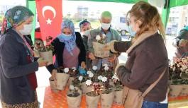 Sultan Keykubat adına çiçek dağıtılıyor!