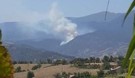 Bir orman yangınıda Kütahya'dan