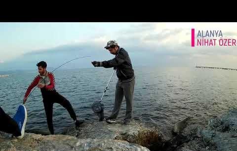 Akdeniz Sularında Nadir Gözüken Esrarengiz Balık