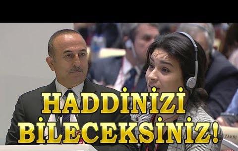 Mevlüt çavuşoğlu, Fransız parlamenter Sonia Krimi'ye haddini bildirdi!