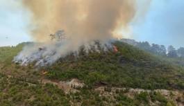 Alanya Yeniköy'de yangın devam ediyor