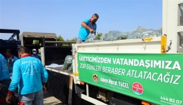 Alanya'da ücretsiz dağıtımlar başladı