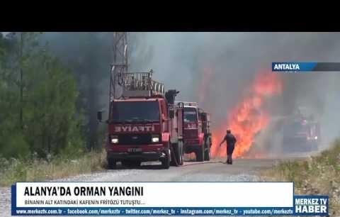 Alanya'daki orman yangınından sıcak görüntüler